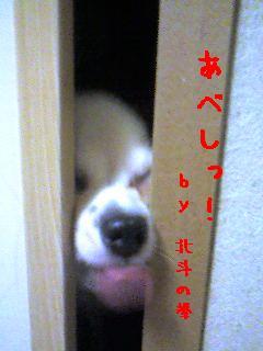 20061126005213.jpg