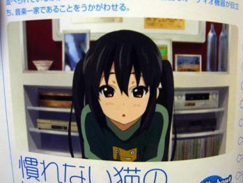 RIMG0286_20111119040147.jpg