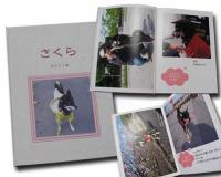アルバム「さくら2011」