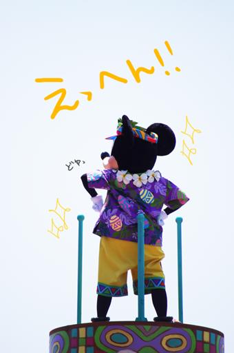 ew_aloha.png
