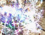 20060823214123.jpg