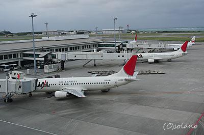 沖縄空港国内線ターミナルJAL側