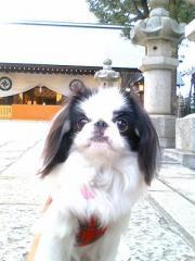 20090105松陰神社