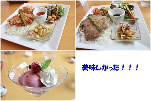 IMG_5721-tile.jpg