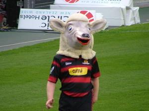 カンタベリーの羊のマスコット