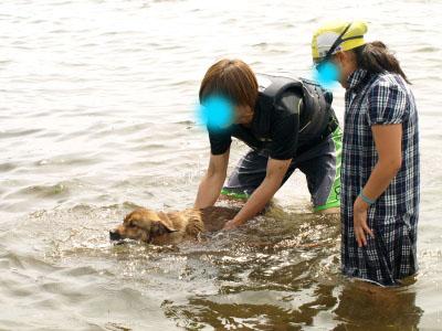 ロン君@天神浜オートキャンプ場