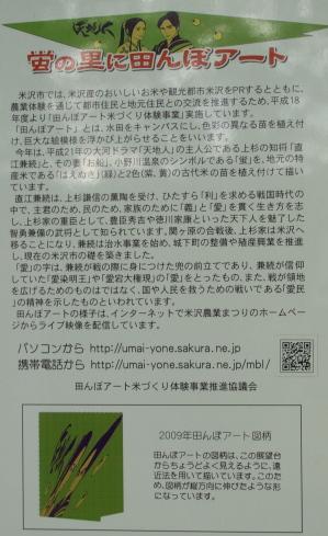 田んぼアート2009@小野川温泉