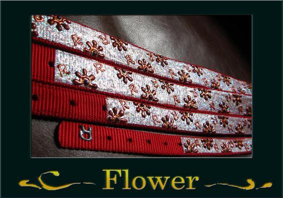 オリジナルペイント カラー イメージ1 Flower ok