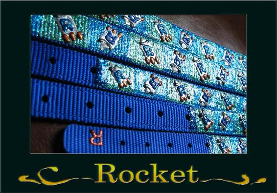 オリジナルペイント カラー イメージ1 Rocket ok