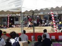 10.26島遊び2