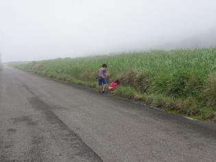 5.8霧の中8