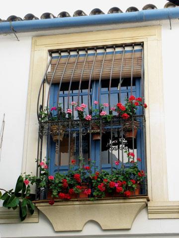 花が飾られた窓(コルドバ)