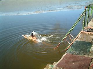 寒中水泳してるし・・・