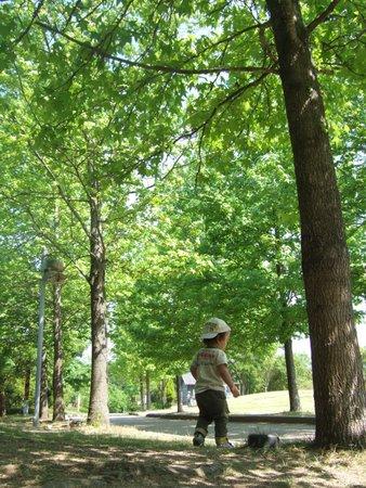 三木森林公園 081