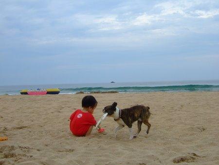 7月 日本海 033