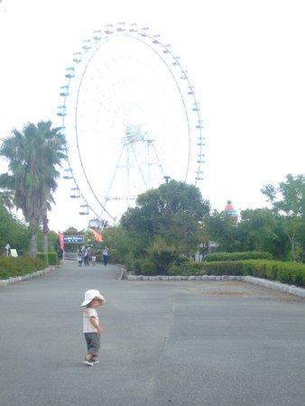 赤穂海浜公園 251