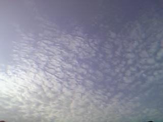 20060113005106