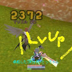 hito-042.jpg