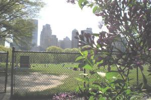 Central-Park-april09-017.jpg