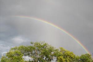 Rainbow-006.jpg
