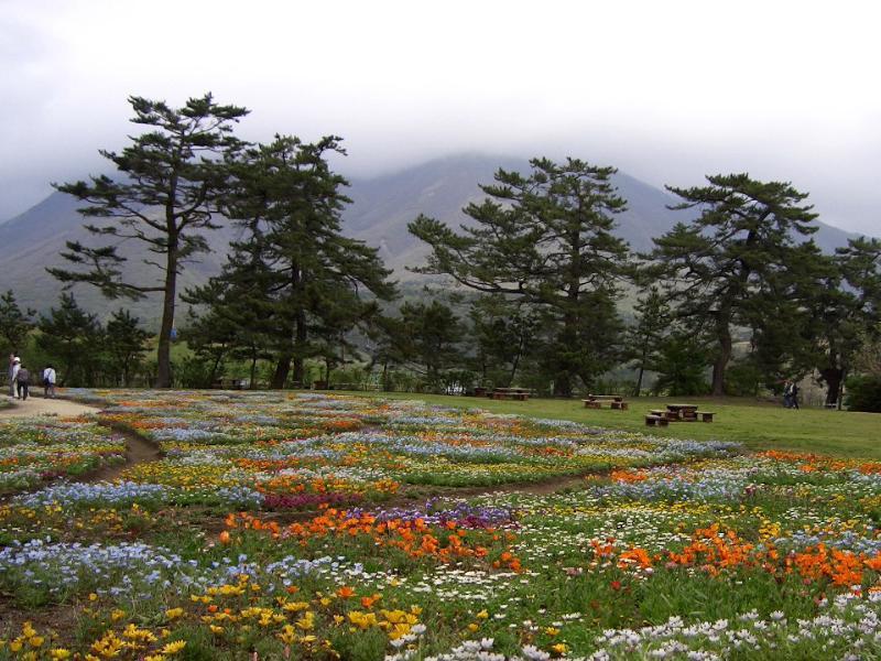 大分県久住高原  くじゅう花公園