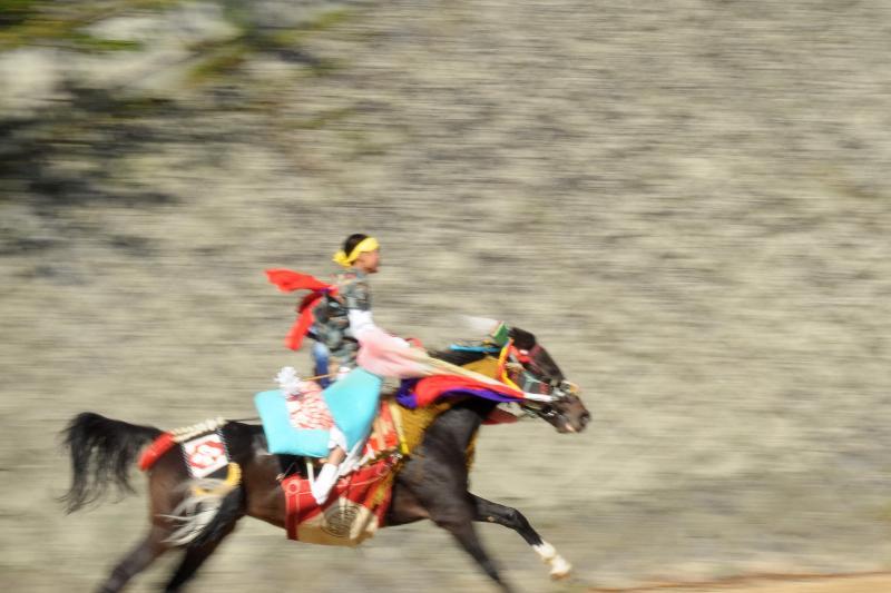 今治市菊間町 菊間祭 2011年 お供馬の走りこみ
