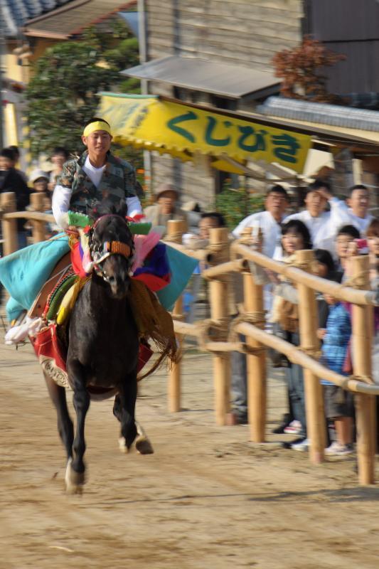今治市菊間町 菊間祭 お供馬の走りこみ