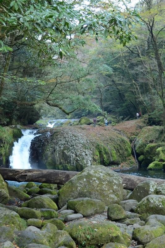 熊本県菊池市原 菊池渓谷 渓流と森林浴
