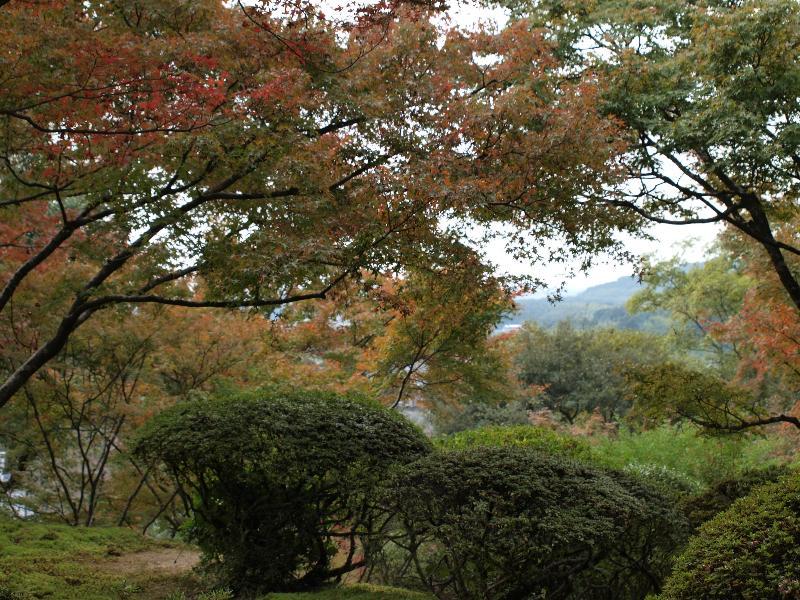 佐賀県神埼市神埼町  九年庵 九年庵 別荘と庭園