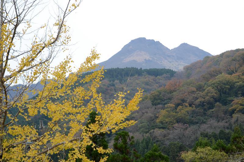 大分県由布市湯布院町  湯布院民芸村付近 秋景色