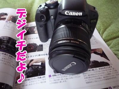 P1030806.jpg