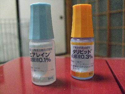 2008_1220ichi0004.jpg