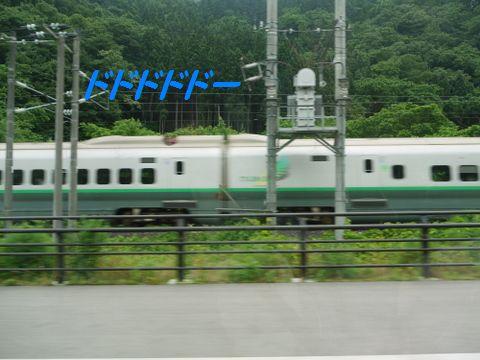 P1060190.jpg