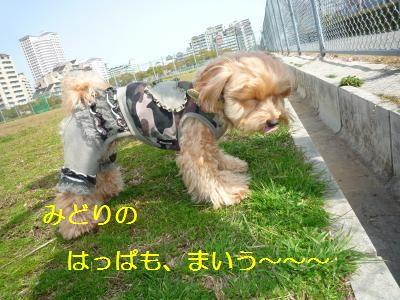 お天気11