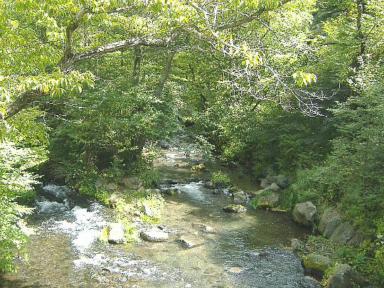 090913-湯川