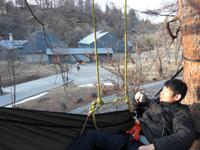 treeclimbing_teatime_ogawa.jpg