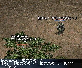 20050815(17).jpg