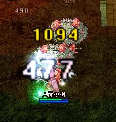 081002-4.jpg