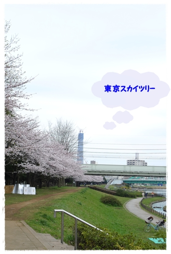 042_20100405004210.jpg