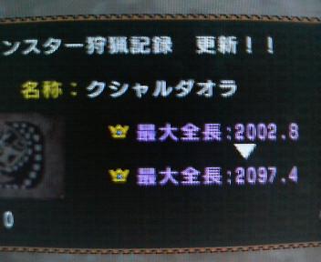 P1000139.jpg