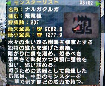 P1000447.jpg