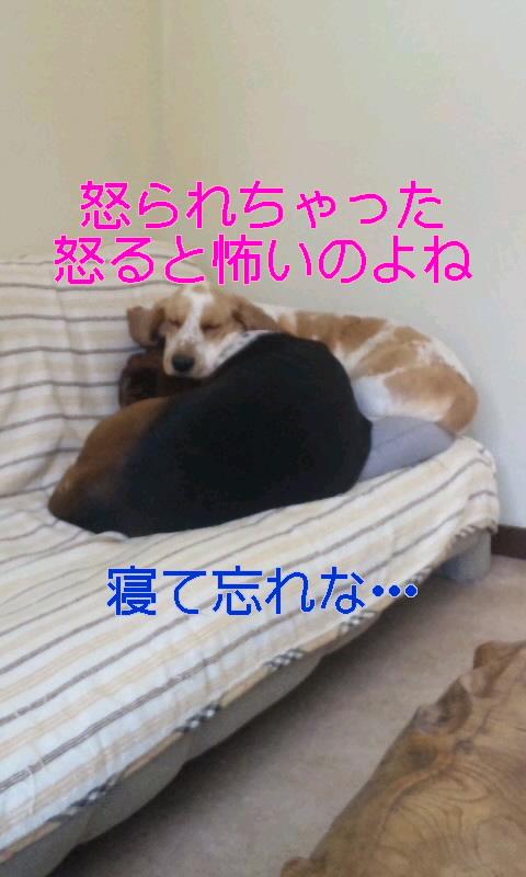 100211_1100~01.jpg