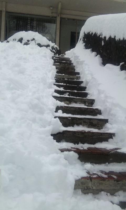 100203_雪