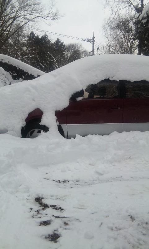 100203_雪車