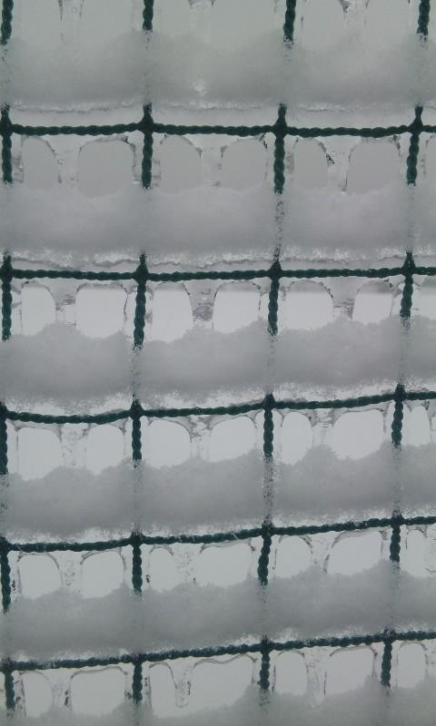 100212_氷結2