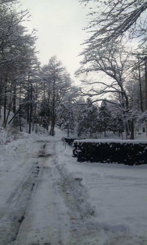 100218_雪.3