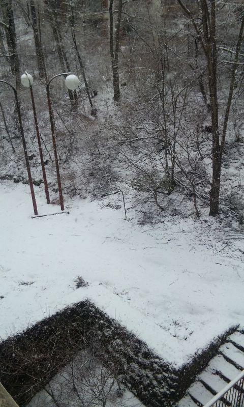 100228_雪