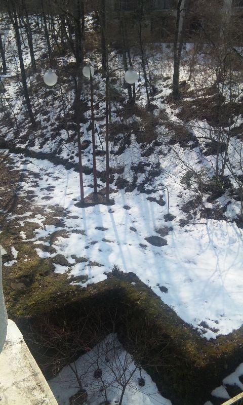 100316_雪