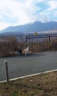 101201_富士山と