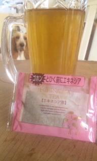 101210_お茶